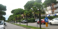 Lignano zelené ulice - pohled 2