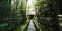 Cesta k chrámu Kótó-in, zde se zrodil japonský čajový obřad