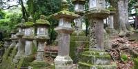 Kamenné lampy po cestě ke svatyni Kasuga Taiša