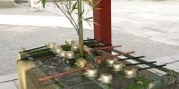 Studánka pro očistu u jednoho z chrámů v Nikkó Tóšó-gů
