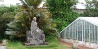 Ananasová plantáž Augusto Arruda v Pontě Delgadě.