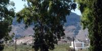 Rhodos - hotel Marathon - pohled z příchozí částí k eukaliptové aleji