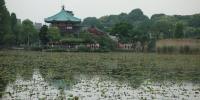 Chrám Bentendo na rybníku Šinobazu v parku Ueno